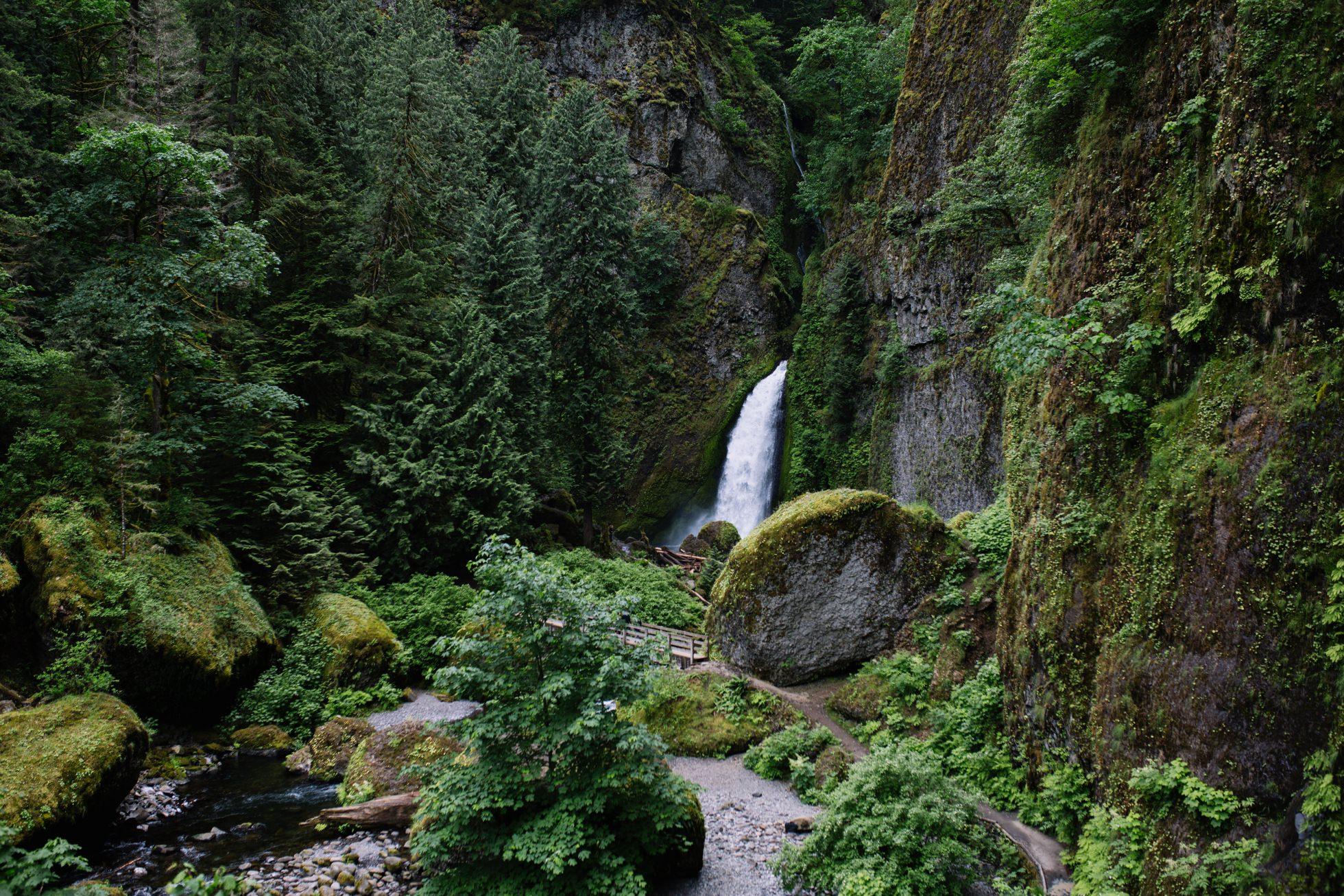 Wahclella Falls Waterfall Oregon Elopement 002