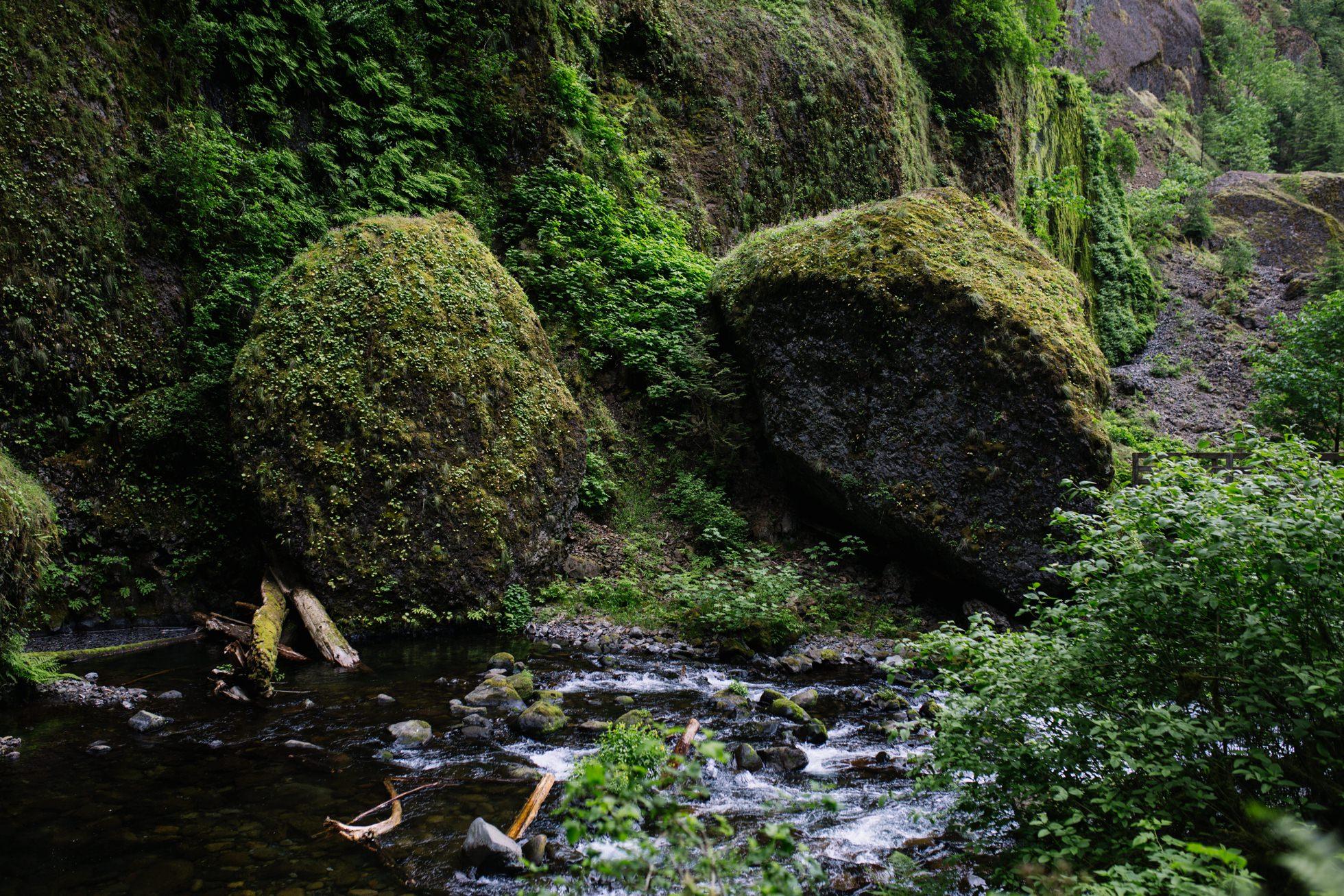 Wahclella Falls Waterfall Oregon Elopement 016