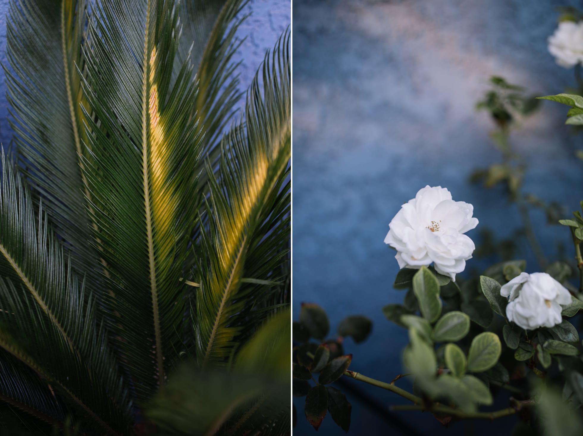 0002-la-south-bay-california-travel-photography-torrance-ca