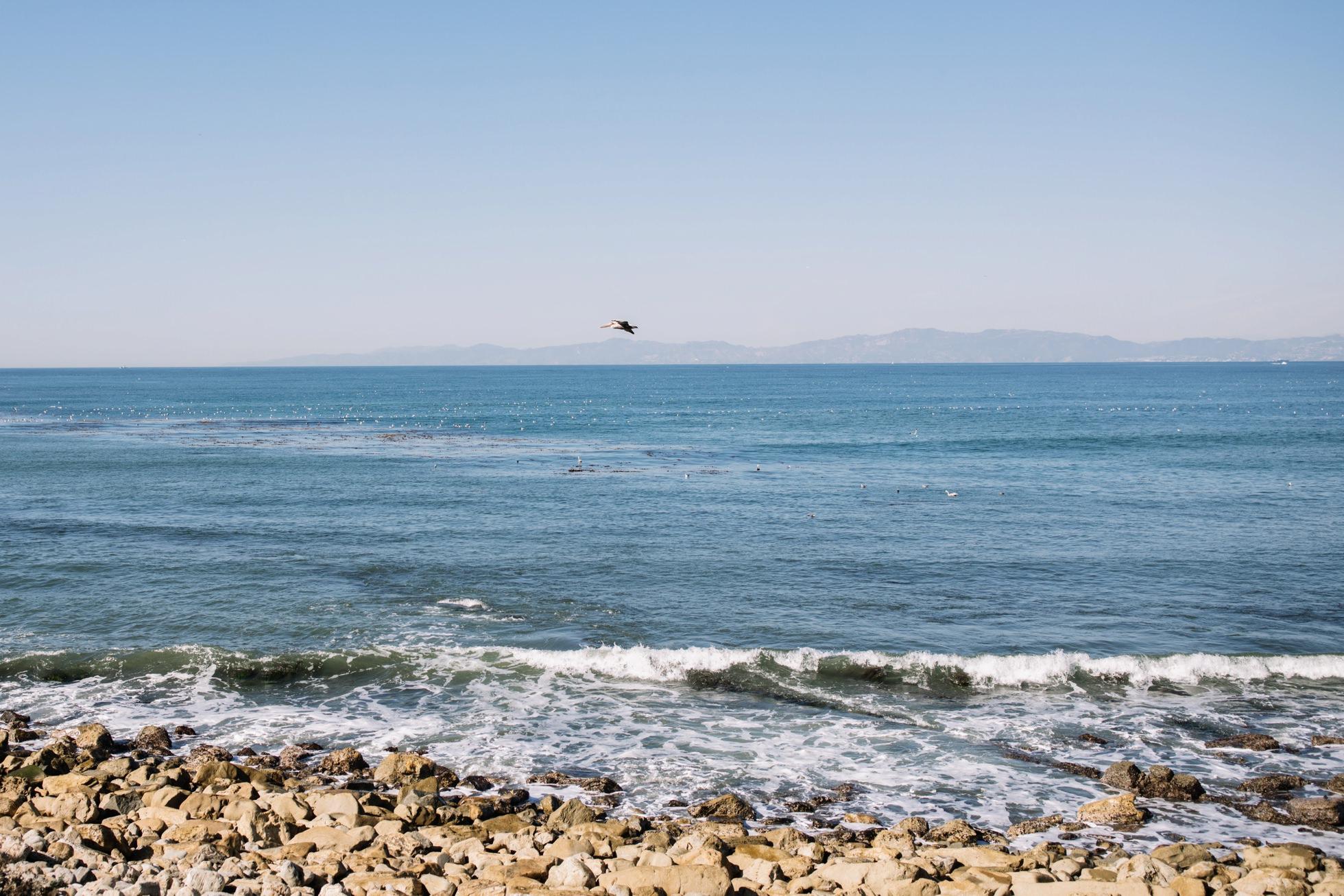 0008-la-south-bay-california-travel-photography-torrance-ca