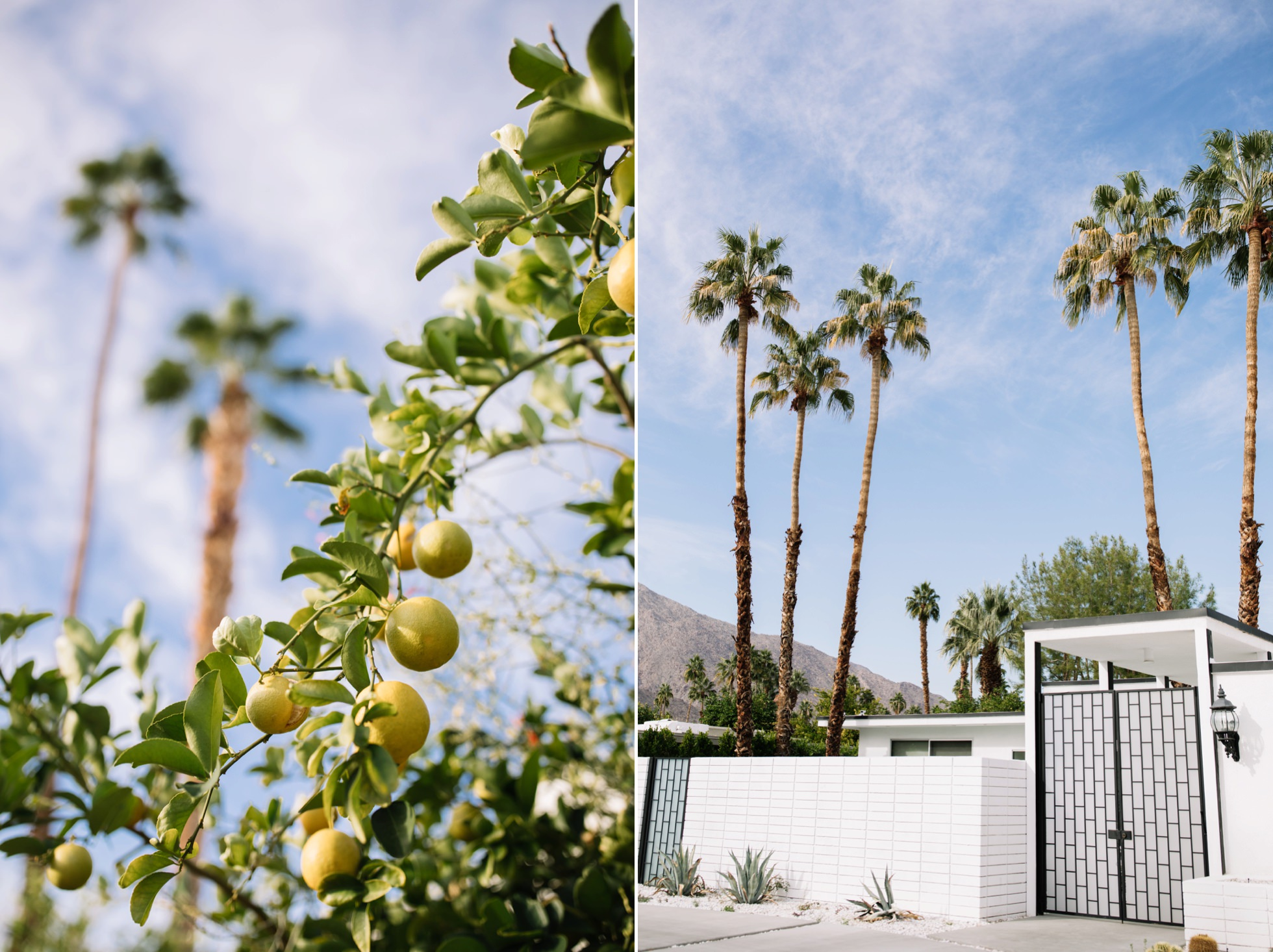0034-palm-springs-ca-midcentury-modern-architecture-homes