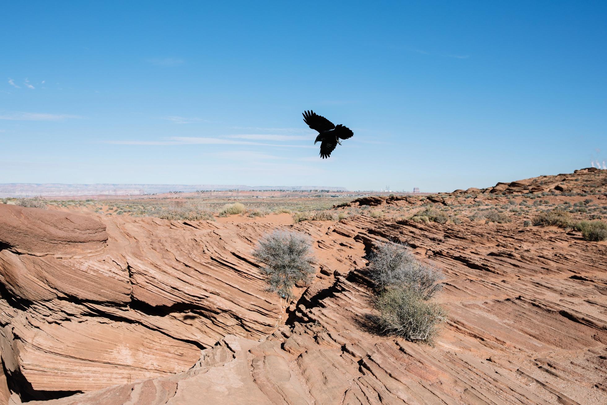 0108-arizona-horseshoe-bend-photography-nature-outdoor-wedding-location