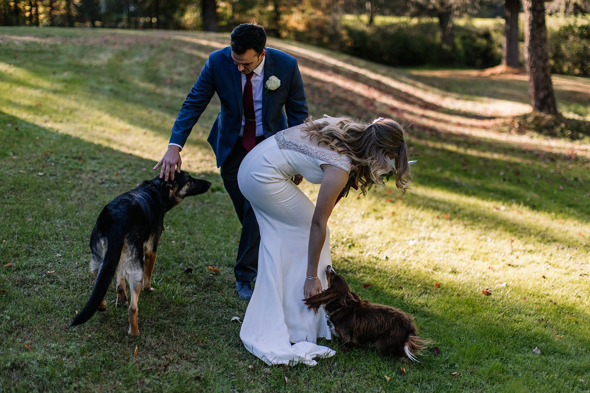 Outdoor Elopement Wedding Photos Dogs
