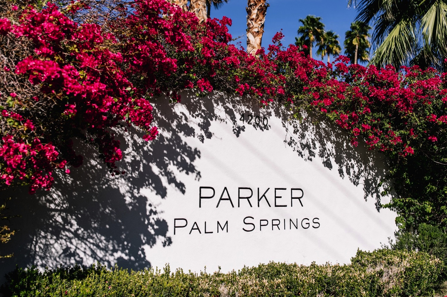 Parker Palm Springs Wedding CA